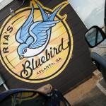 02-rias-bluebird