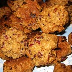 13 oatmeal cranberry cookies 150x150 This Frontier Needs Heroes Holiday Jamboree