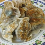 08-fried-pork-dumplings