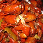 06 crawfish heads that need sucking 150x150 Whos Your Crawdaddy?