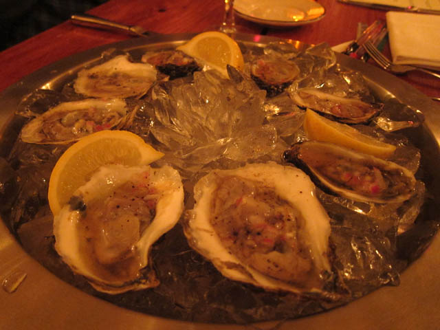 01 Oysters - Albert Hall Tavern