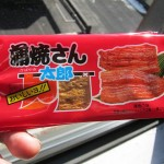 04 Eel flavored Japanese Dried Fish Snack