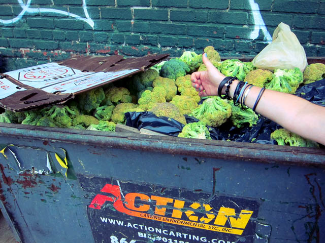 Dumpster of Broccoli