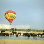 06 Baloon Ellies South Africa 150x150 South African Tourism Pics