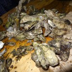 14 Oyster Roast - Chicago Food Film Festival