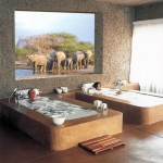 15 Spa bath South Africa 150x150 South African Tourism Pics