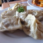 16 Dumplings - Elza Fancy Food