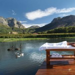 17 Wellness - South Africa