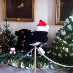 02 Bo White House Holiday Party 150x150 Foodblogging Obamas White House Holiday Party