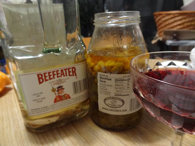 01 Ginseng and Raisin infused Gin and Wine