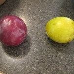 13 Alamo plums 2 150x150 Tio Wally Eats America: Of Flotation and Fruit