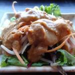03 Salad with Thai Peanut Sauce Hi Noodle 150x150 Hi Noodle