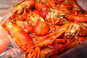 05 Crawfish - Claw Daddy's NYC